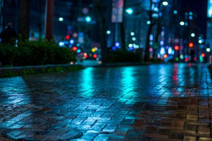 夜の雨の歩道