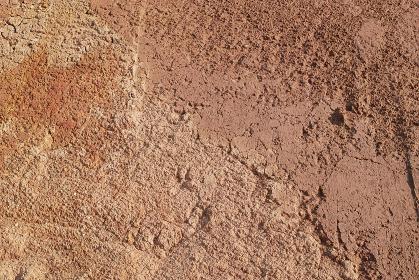 掘削で露出した赤土の地肌