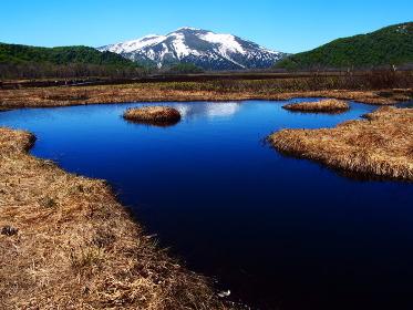 尾瀬ヶ原・竜宮付近の池塘と至仏岳