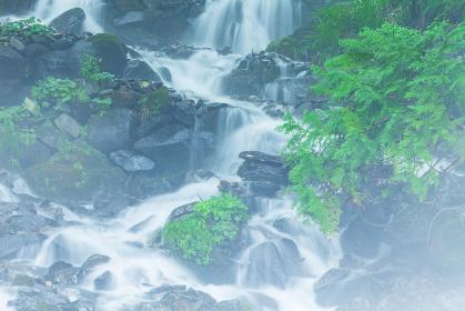 強清水の滝 群馬県