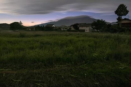 長野県・軽井沢町 発地の蛍と浅間山の夕景