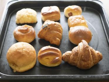 オーブントレーに並んだ焼きたてパン