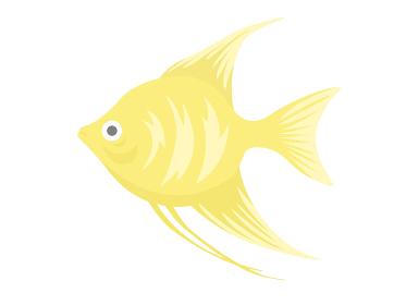 熱帯魚のエンゼルフィッシュのイラスト