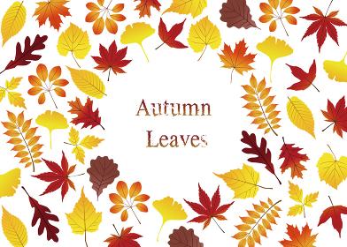 カラフル紅葉のグリーティングカード
