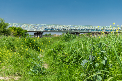 青空広がる郊外の風景 北区赤羽荒川河川敷