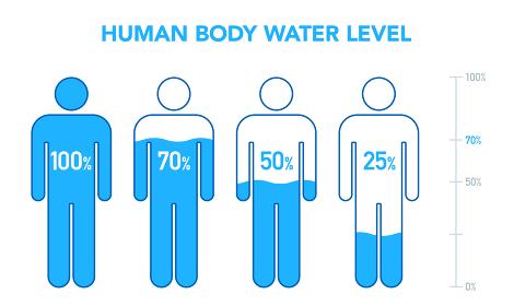 人体と水分レベルの図