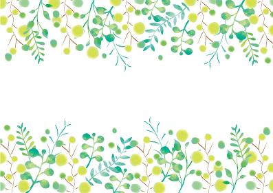 ナチュラルな木々の背景素材 フレーム 枠 緑 新緑 森林浴 高原