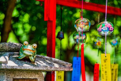 夏の風物詩三井寺の風鈴