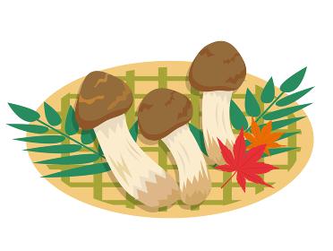 秋の松茸イラスト