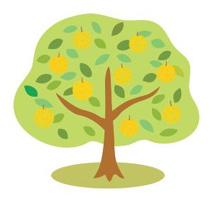 たくさん実がなった梨の木