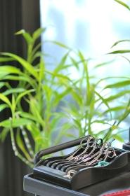 美容室のカットバサミと観葉植物