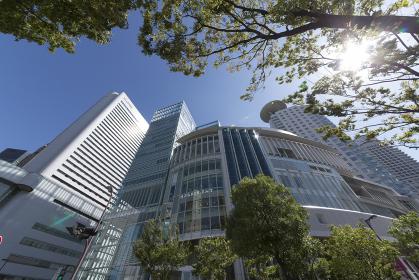 西梅田の高層ビル群