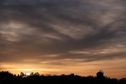 夕焼けの農場