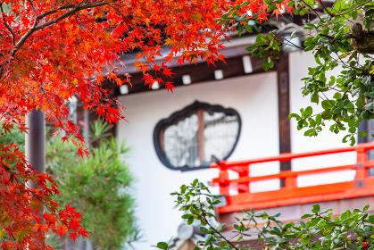 朝護孫子寺 (奈良県生駒郡 2013/12/02撮影)