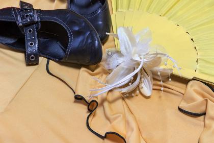 Closeup view  of Flamenco dance assesories