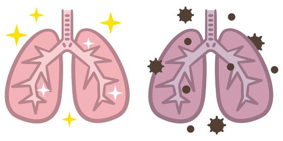 肺 健康 病気 セット
