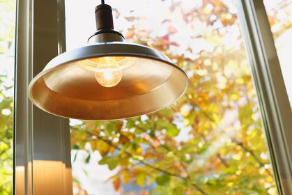 黄葉と照明器具