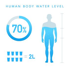 人体の水分割合の図 水のアイコン 男性