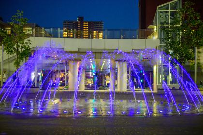 噴水と芝生の綺麗な公園の夜景