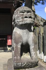 陸奥国分寺跡狛犬
