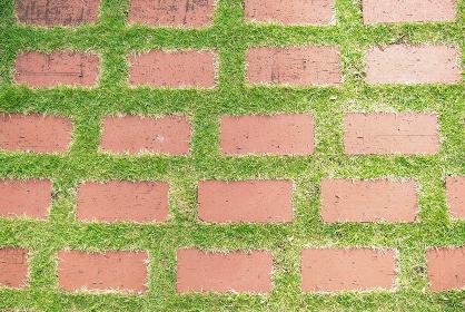芝生に埋まったレンガ