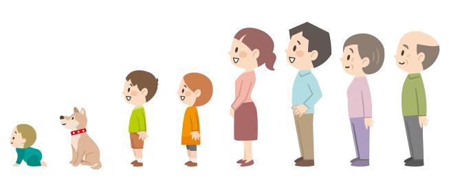 三世代家族の横向きセット