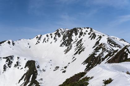 5月の仙丈ヶ岳