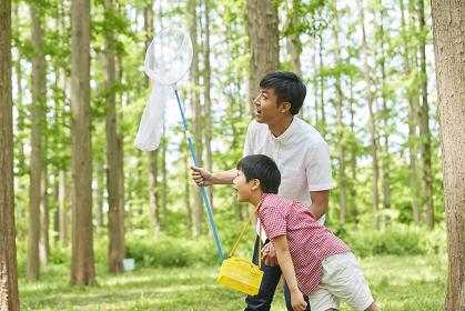 虫取りをする父親と息子