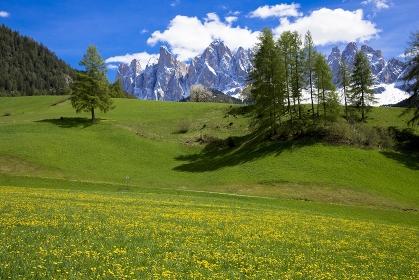 イタリア ドロミテ地方 フネ谷の春