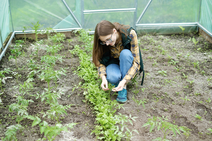 woman controls the quality of plants through a magnifying glass