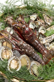伊勢海老と魚貝類