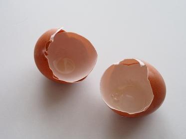 テーブルに置かれた卵の殻