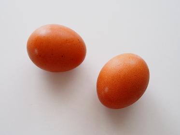 テーブルに置かれた二つの卵