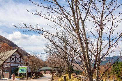 秋晴れの由布岳パーキングからの眺め(大分県)