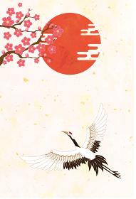 和柄:鶴 丹頂鶴 鳥 和風 和柄 和風 花 お正月 新年 成人式 卒業式 結婚 祝 振袖 着物
