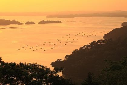 奥の細道 松島の夕景