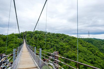 大きな吊り橋 星のブランコ ほしだ園地
