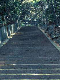 対馬一宮である海神神社の鳥居と参道 10月