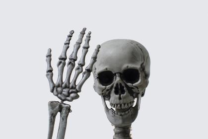 手を見る骸骨