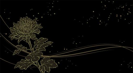 上品な菊の花の背景イラスト(金蒔絵風)