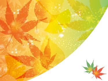 紅葉~秋のイメージの綺麗な背景 バックグラウンド モミジのイラスト