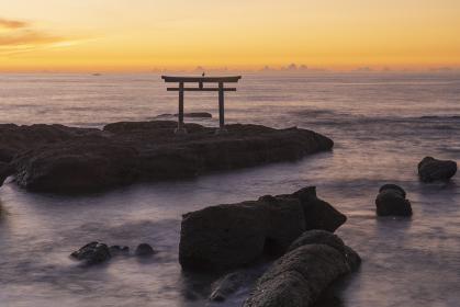 【茨城県】大洗 磯前神社 神磯の鳥居