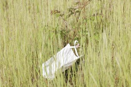 草むらに捨てられたマスク