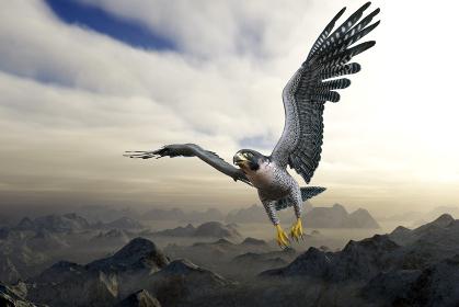 峰が連なる山よりも高い空を飛ぶ灰色のはやぶさが目的地を目指して一心不乱に飛行する
