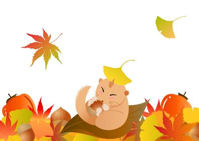 落ち葉の中、どんぐりを持って眠るヤマネ