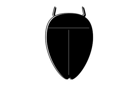 ゲンゴロウ、昆虫食で食べられる昆虫