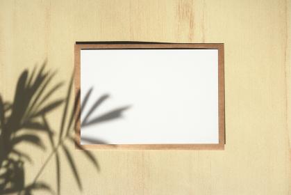 テーブルヤシの影と白いカード 11
