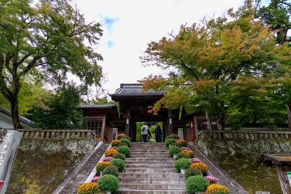 修禅寺の山門をくぐる観光客