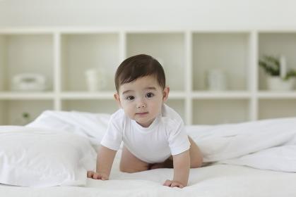 ベッドの上をハイハイする赤ちゃん