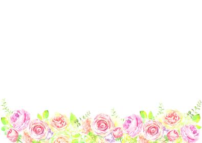 水彩で描いた薔薇のフレーム